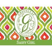 Дерзкая Девчонка (Sassy girl)