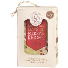 Саше Воспоминания Рождества (Merry Memories)