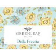 Белла Фрезия (Bella Freesia)