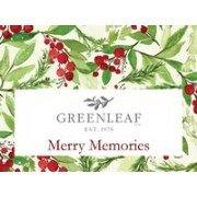 Воспоминания Рождества (Merry Memories)