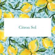 Цитрусовое Солнышко (Citron Sol)