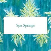 Спа Источник (Spa Springs)